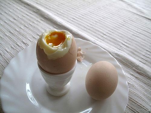kayısı yumurta
