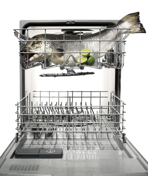 salmon-ala-dishwasher