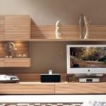 televizyon ünite modelleri