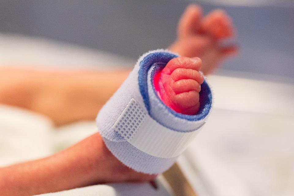 bebek premature