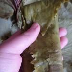 yaprak salamura klasik 3